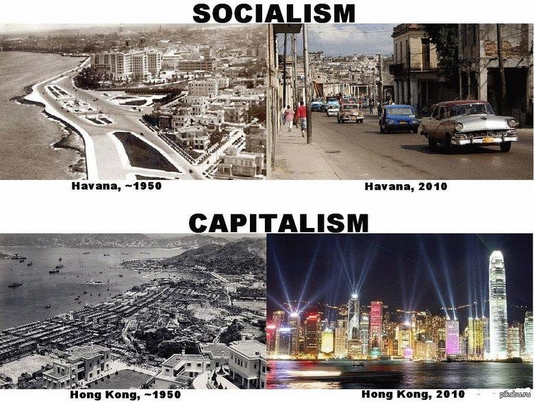 Infographic definition of socialism capitalism