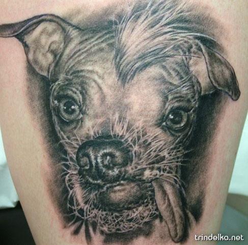 фото самые нелепые татуировки
