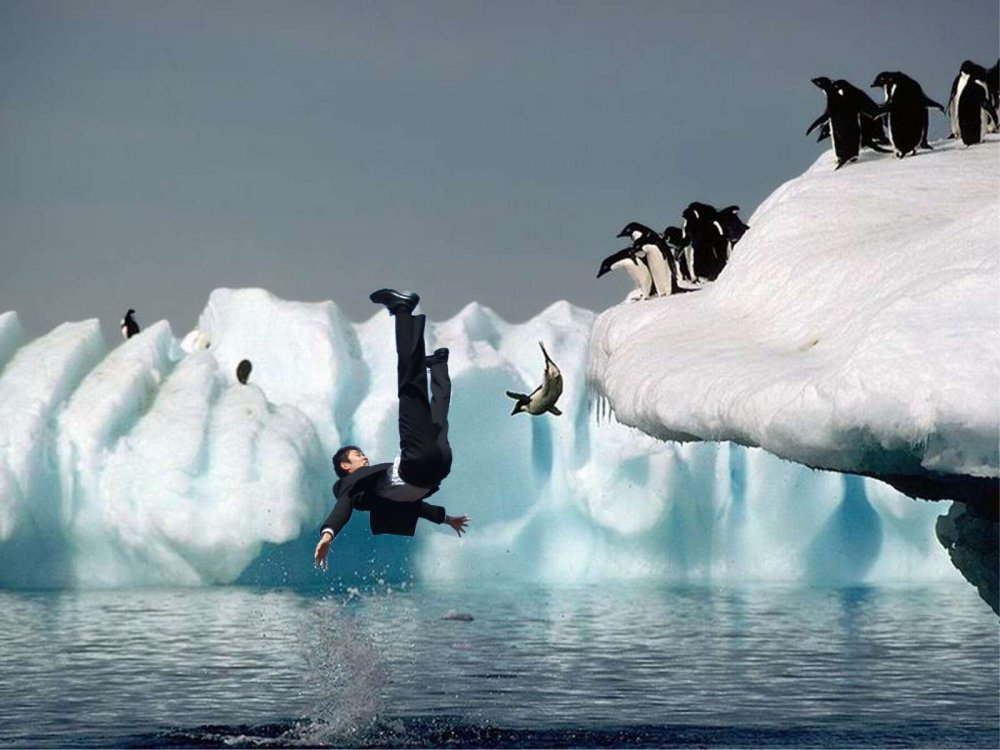 pingvini-ebutsya-foto-dva-transa-ebut-devushku-v-anal
