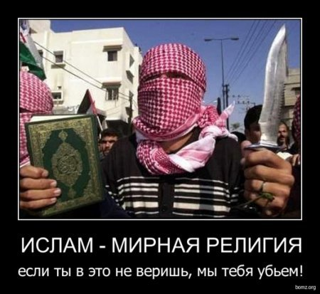 Хуй мусульманина показать