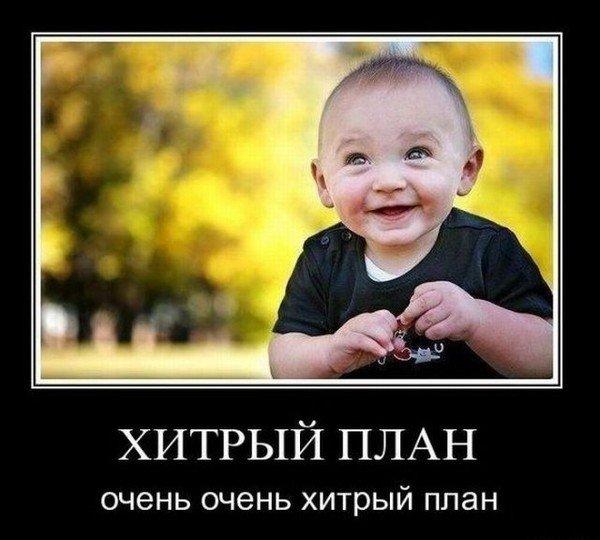 https://cs.pikabu.ru/images/big_size_comm/2013-07_1/13728176627530.jpg