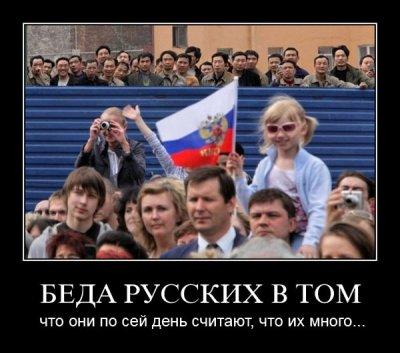 Пиздят кавказов