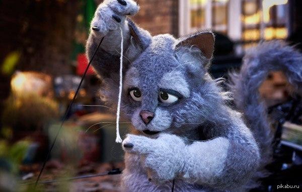 Откуда этот котик?