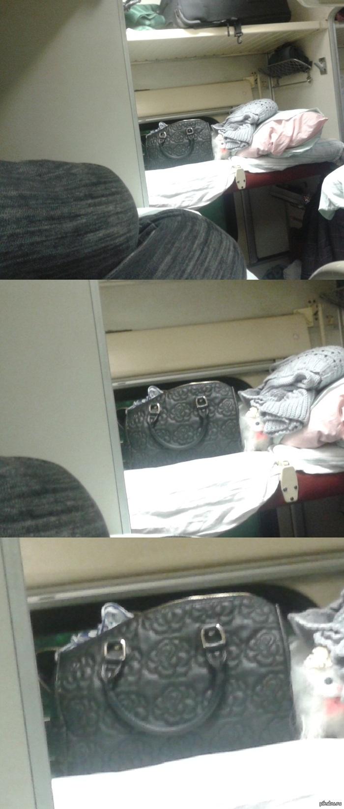 Ехал в поезде домой И весь вечер за мной наблюдала упоротая сумка