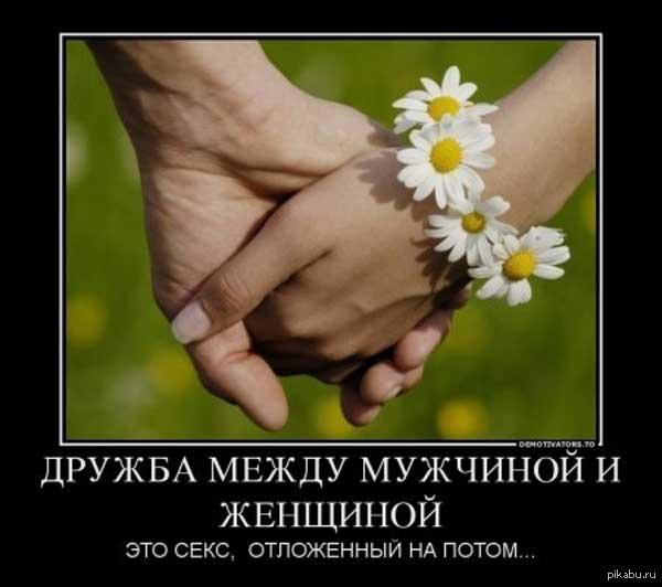 Дружба Вокруг Знакомства