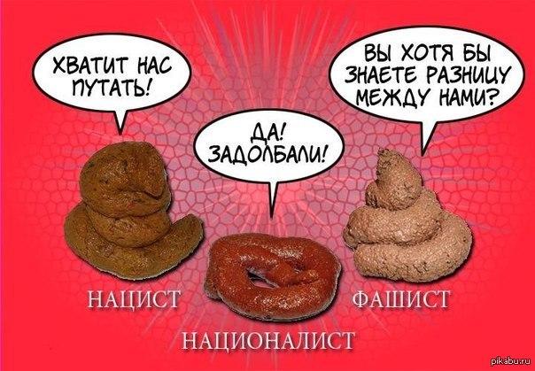 https://cs.pikabu.ru/post_img/2013/03/04/10/1362415458_1790225730.jpg