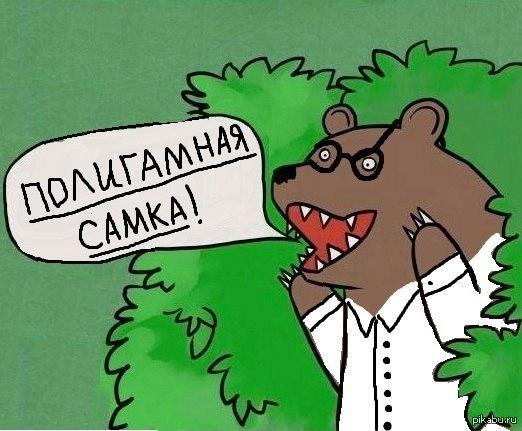 Медведь кричит шлюха почему