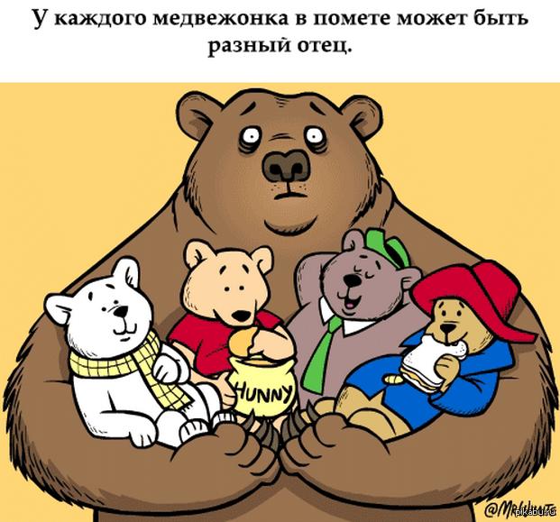 Шлюха медведь каренина фото 416-127
