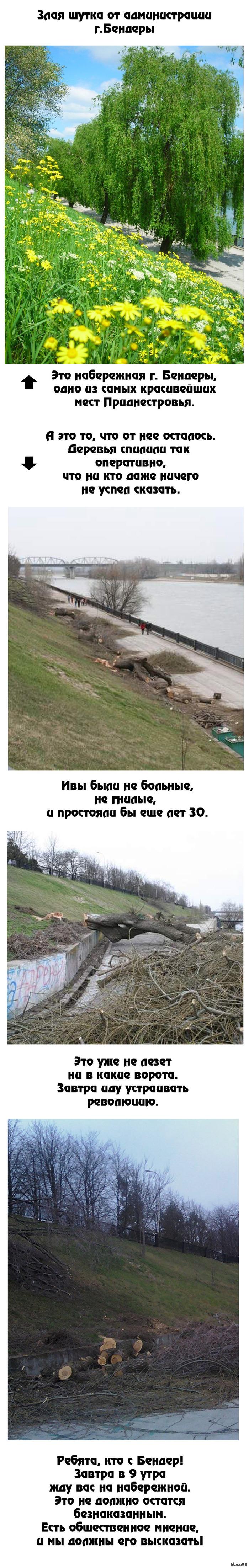 """""""Отличная"""" шутка от администрации г. Бендеры, Приднестровье. Сегодня в Бендерах вырубили красивейшую набережную! Зачем? За что?"""