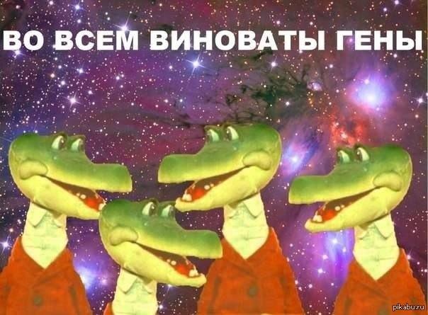 1365966195_1221455663.jpg