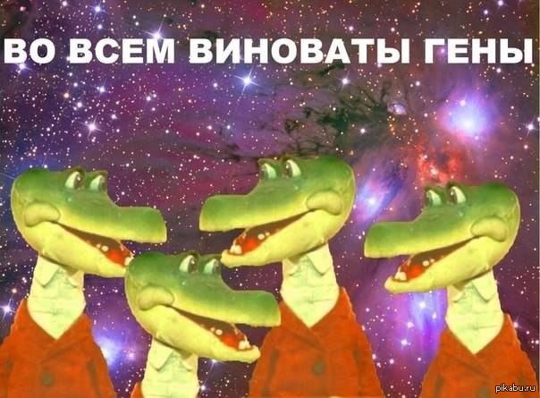 https://cs.pikabu.ru/post_img/2013/04/14/12/1365966195_1221455663.jpg