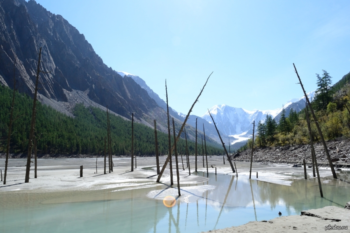 Маашейское озеро, Горный Алтай последствия сброса озера