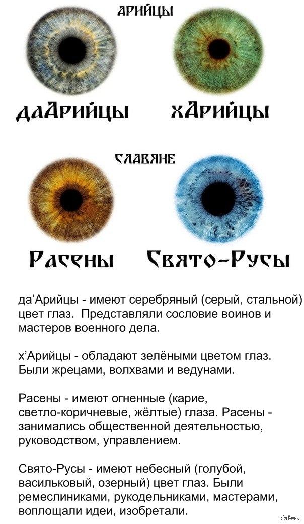 Дарийцы харийцы цвет глаз