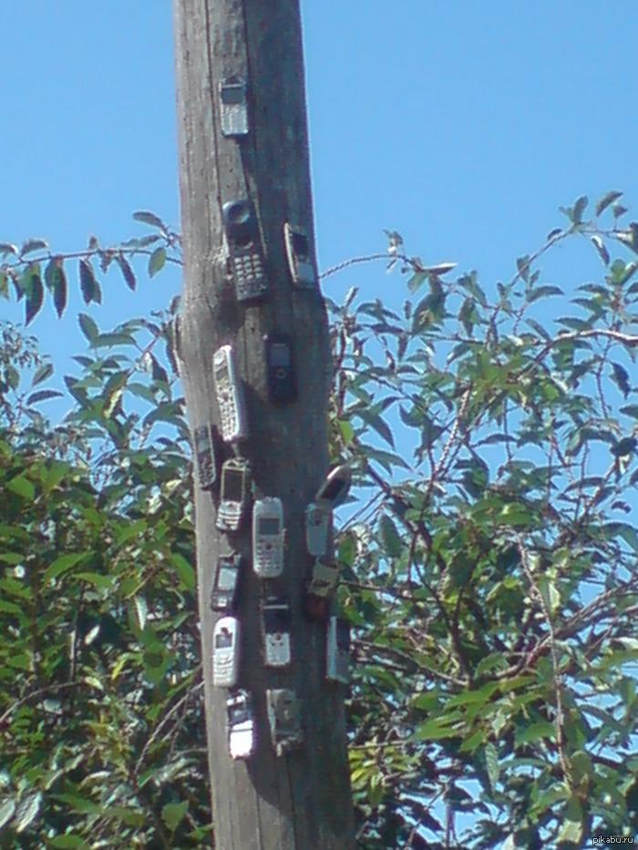 кладбище телефонов на даче есть столб на который прибивают поломанные или ненужные телефоны