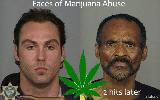 Курение марихуаны и последствия конопля где растет
