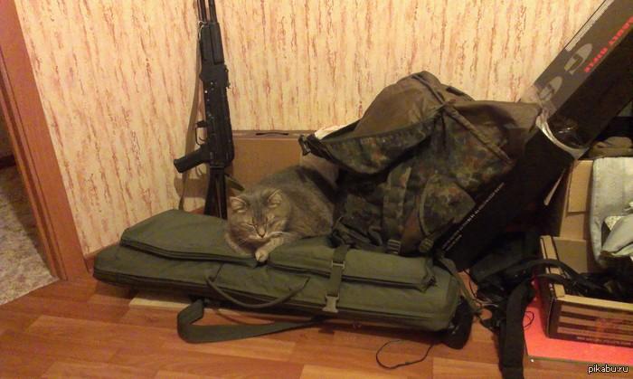 У всех кот как кот, а мой.. занимаюсь страйкболом. У всех кот спит на ноутбуке или клавиатуре, а мой на чехле с автоматом