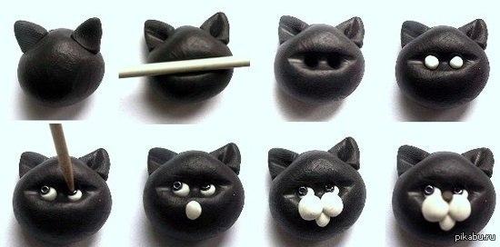 Как сделать фото кота