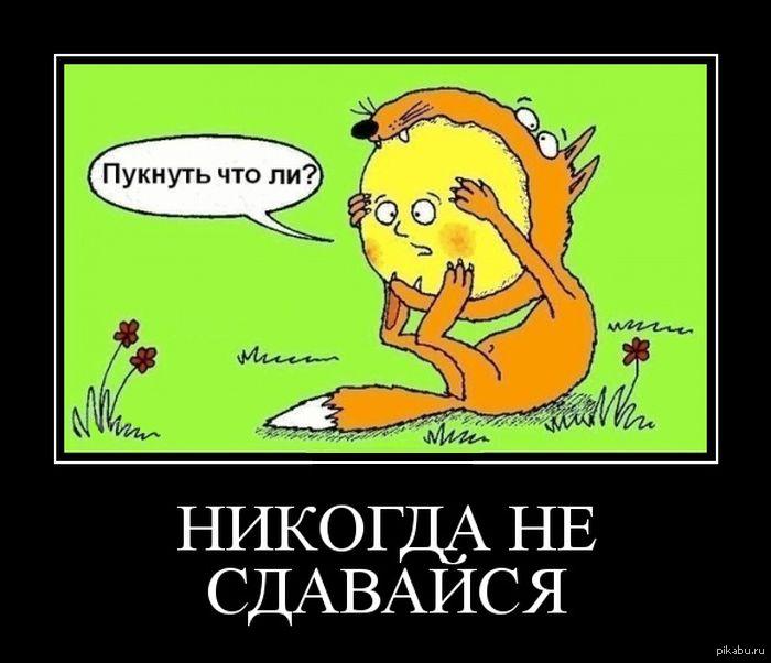 Не сдавайся смешные картинки, открытки россия