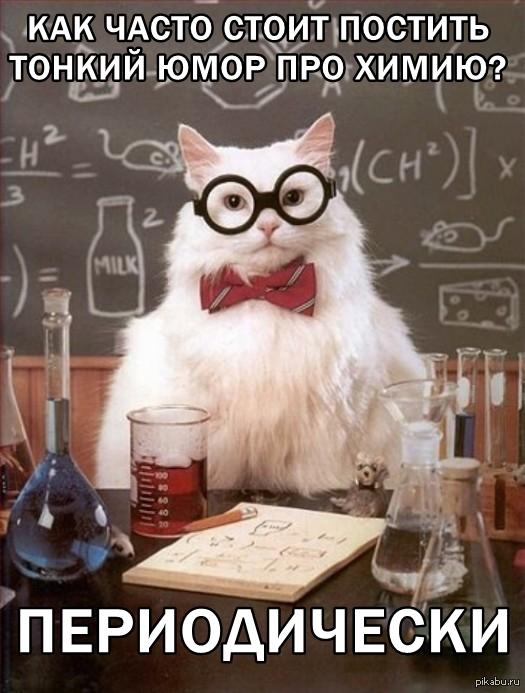 best electromagnetic cat door
