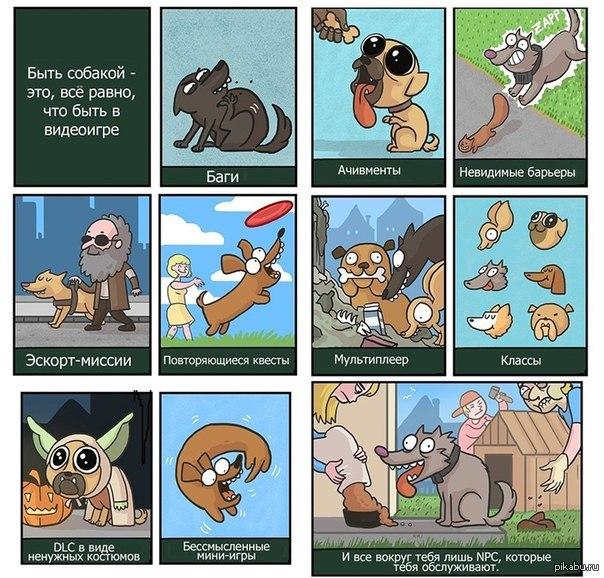Прикольные комиксы в картинках с собаками, орхидеи