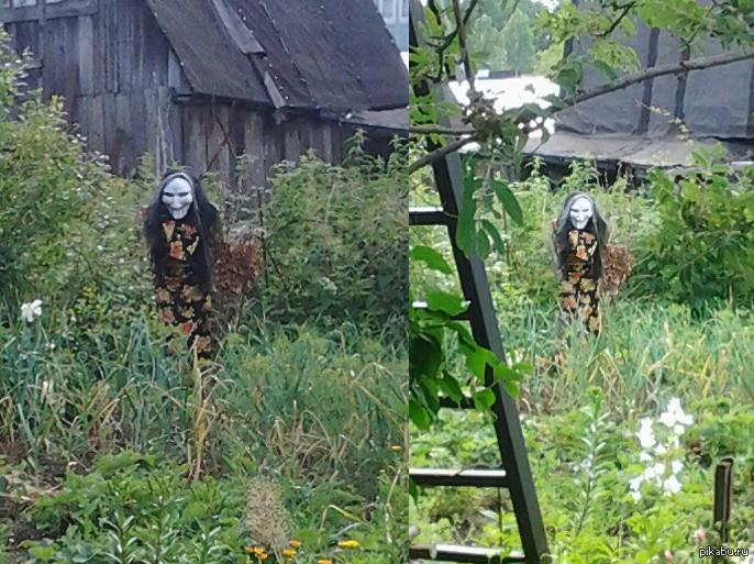 Правильное пугало Пугало соседей по огороду. Да, сфоторафировано на тостер.