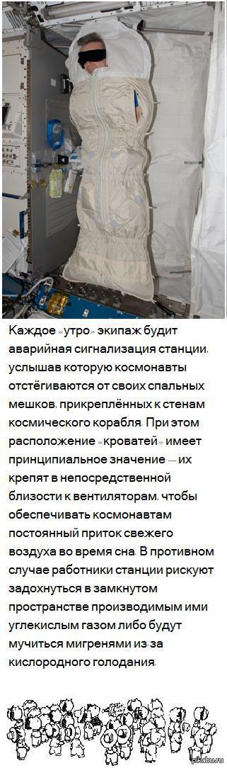 Как спят космонавты? http://www.esa.int/Our_Activities/Human_Spaceflight/Astronauts/Daily_life