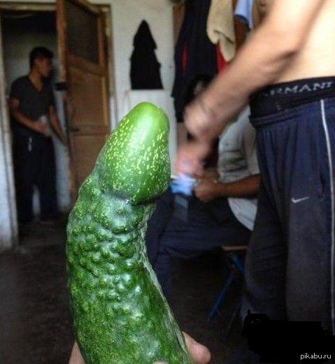 зеленый огурец ванальном проходе