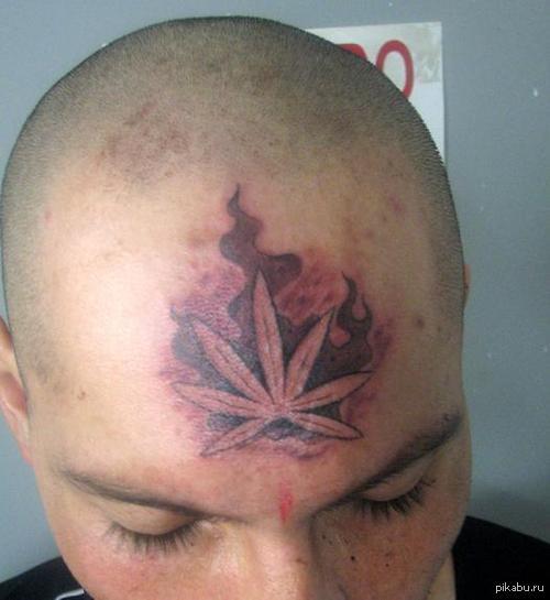 Лист конопли татуировка марихуана этапы роста