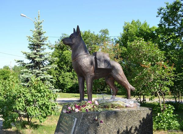 Памятники в россии собакам есть изготовление памятников в спб на тележной 37