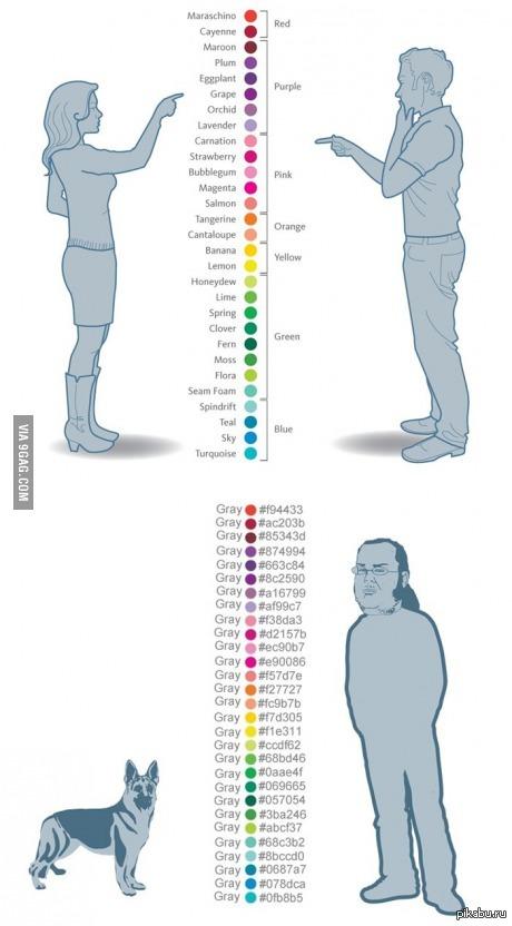 Как видят цвета женщины и мужчины