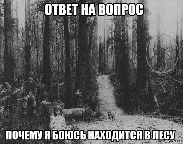 один в лесу скачать торрент