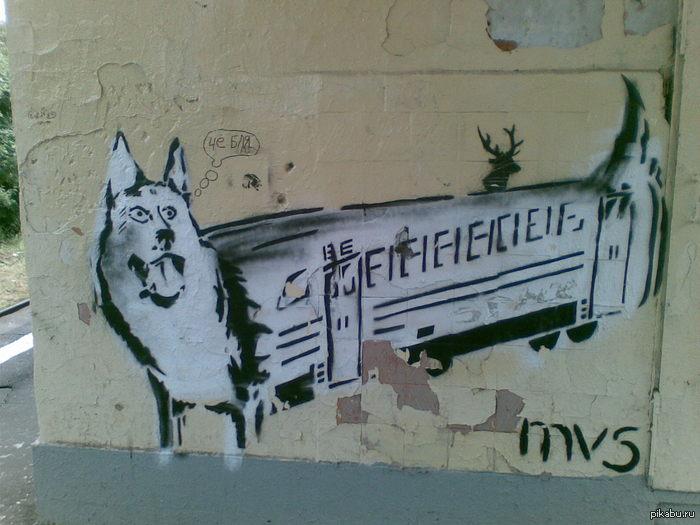 """У нас электрички называют собаками Граффити неизвестного художника на платформе """"Электросталь"""" с прошлогодних моих велопокатушек"""