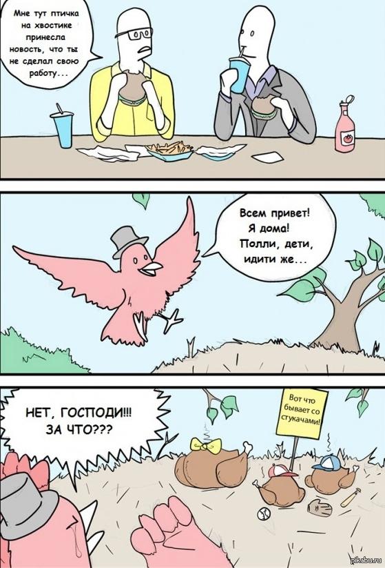 Птичка новость принесла