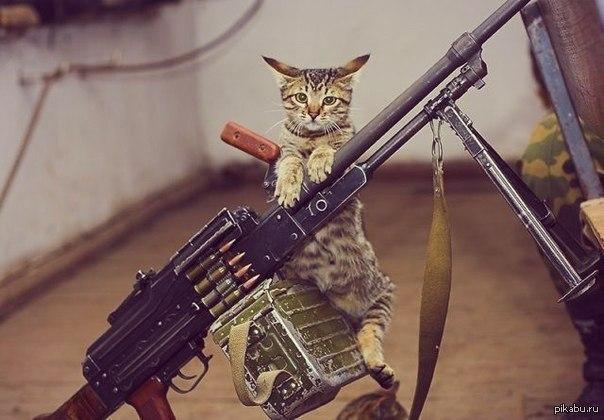Від початку доби ворог тричі обстрілював позиції українських воїнів на Донбасі, втрат немає, - Міноборони - Цензор.НЕТ 5739