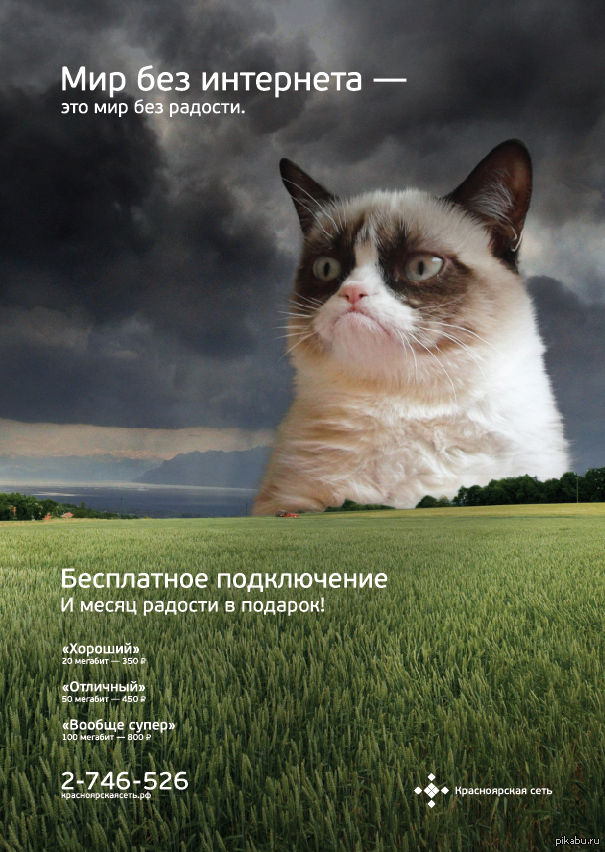 реклама интернет провайдера картинки
