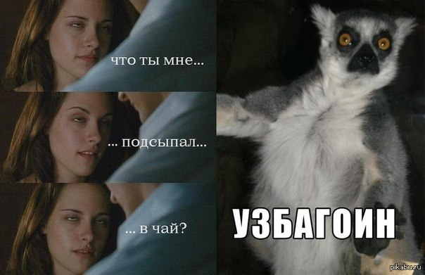 Успакоин