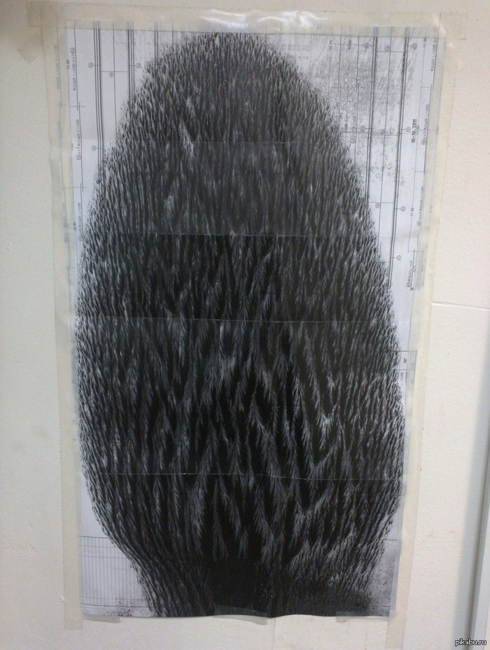 Просыпался тонер на чертеж в плоттере Работаю в типографии, в лазерном ЧБ плоттере просыпался тоннер на чертеж, вот что получилось. Повесил на стенку)
