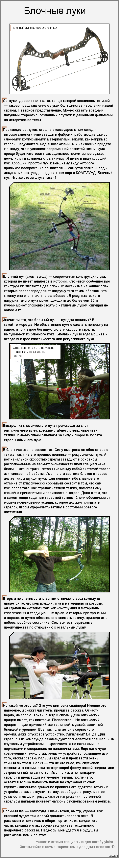 "Блочные луки (длиннопост) По просьбе <a href=""http://pikabu.ru/story/arbaletyi_dlinnopost_1607845#comment_16879612"">#comment_16879612</a> ."