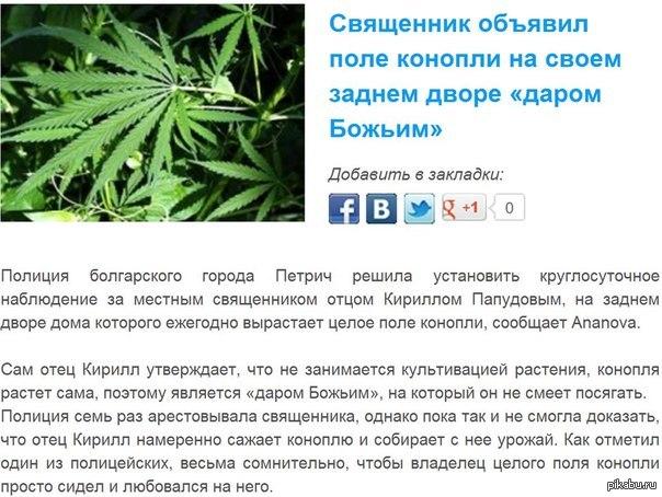 Кто бог конопли украина семена канабиса