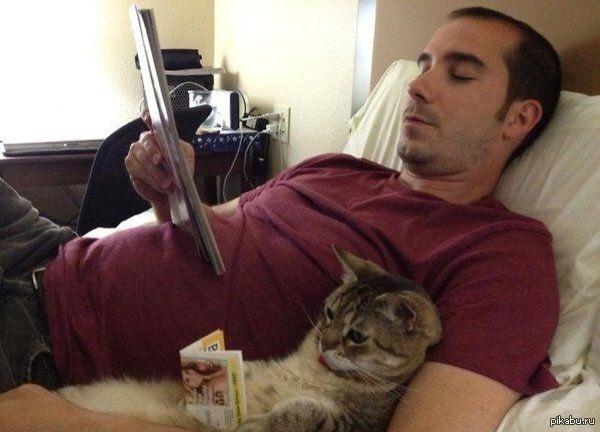 Молодой парень с кошкой разговаривает по видеопередаче, общение ... | 432x600