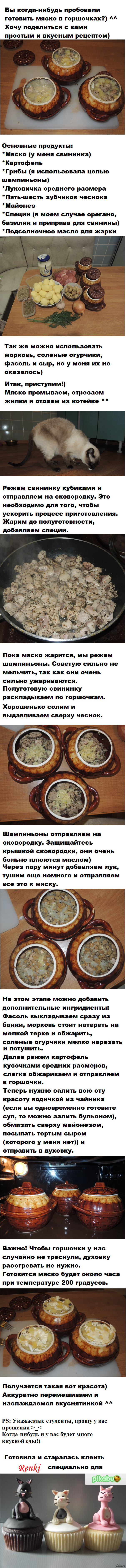 Свинина в горшочках Простой рецепт мяска в горшочках ^^