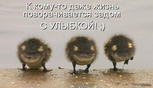 всем позитивного утречка=)