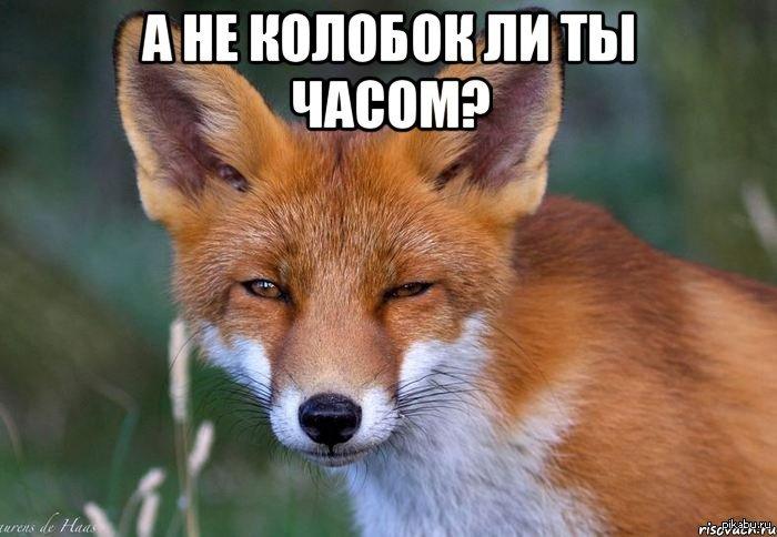Росія ніколи не визнає державну підтримку допінгу, - міністр спорту Колобков - Цензор.НЕТ 214