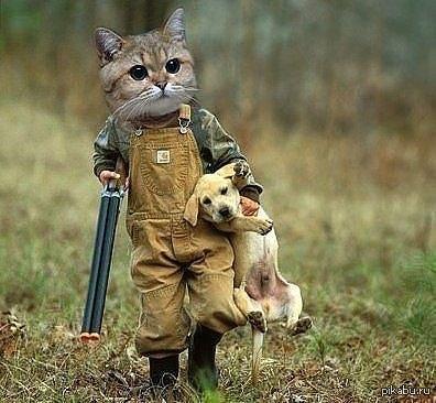 охотник скачать торрент - фото 4