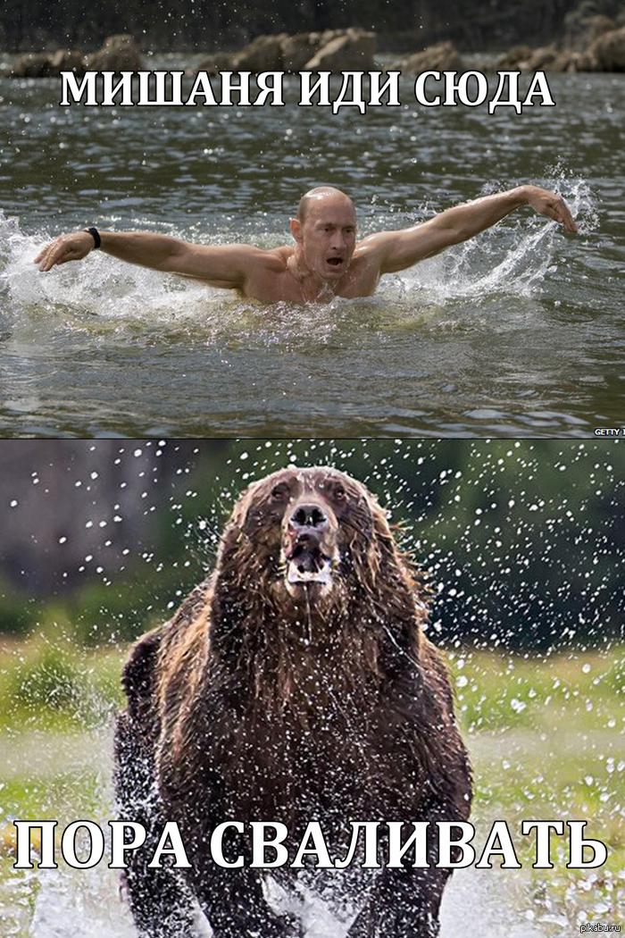 Путин на медведе. Хочу кататься на мишутке=)))