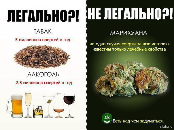 a comparison of cannabis and tobacco properties Comparing cannabis and nicotine withdrawal bursac z comparison of cannabis and tobacco it is possible that drugmonkey.