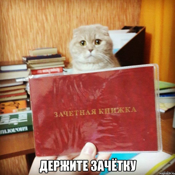 cat 4 training program