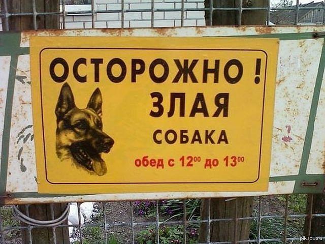 Весны, осторожно злая собака смешные картинки