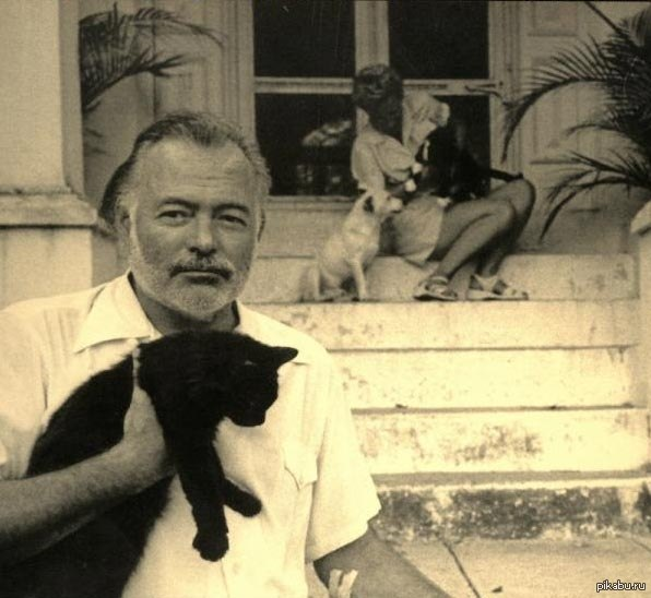 """a literary analysis of hemingways style in soldiers home Earnest hemingway's short story """"soldier's home of hemingway's writing style seems to lie literary analysis on hemingway's soldier's."""