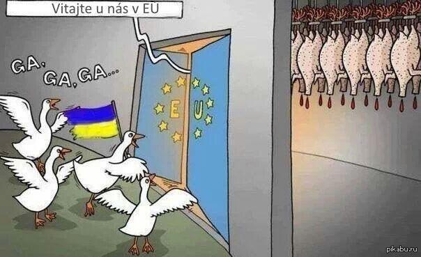 Га! Вступаем в ЕС! фотошоп! картинка 2004года, флаг словакии заменили на Украинский.